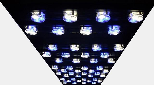 http://www.alpheus-aquarium.com/images/IMG_6284.JPG
